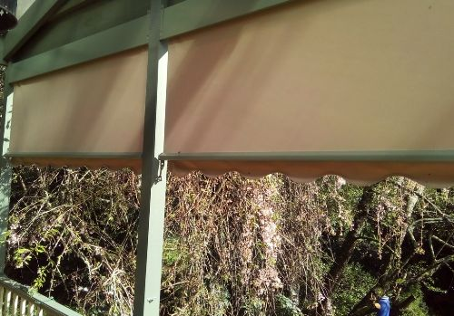 Outdoor Blinds for Pergola